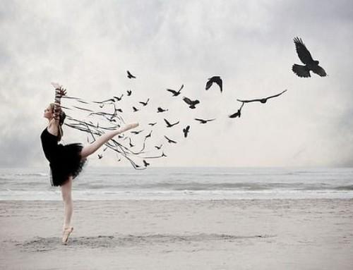 Dança das palavras